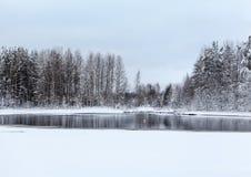 Λίμνη και παγωμένα δέντρα στο χειμώνα Στοκ φωτογραφίες με δικαίωμα ελεύθερης χρήσης