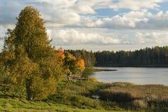 Λίμνη και χρωματισμένα φθινόπωρο δέντρα Στοκ Εικόνα