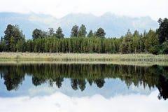 Λίμνη και όμορφο refection άποψης δέντρων το πρωί Στοκ Εικόνα