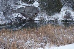Λίμνη και Cattails Στοκ εικόνα με δικαίωμα ελεύθερης χρήσης