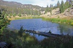 Λίμνη καστόρων στο ίχνος καστόρων, εθνικό πάρκο Yellowstone Στοκ Εικόνες