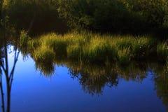 λίμνη καστόρων Στοκ Εικόνες