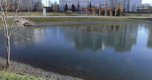 Λίμνη καταρρακτών στο πάρκο απόθεμα βίντεο