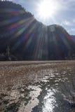 Λίμνη καλάμων σε θεϊκό Jiuzhaigou Στοκ Εικόνα