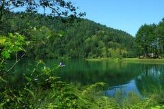 λίμνη Κα 2 bor Στοκ φωτογραφία με δικαίωμα ελεύθερης χρήσης