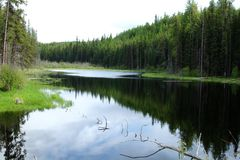 Λίμνη κοιλάδων του Κύκνου Seeley Στοκ φωτογραφίες με δικαίωμα ελεύθερης χρήσης