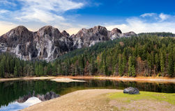 Λίμνη κοντά στο βουνό στο δάσος πεύκων Στοκ Εικόνες