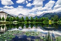 Λίμνη κρίνων νερού στην Αυστρία Στοκ Εικόνες