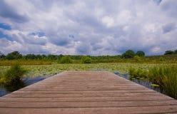λίμνη κρίνων σύννεφων Στοκ φωτογραφία με δικαίωμα ελεύθερης χρήσης