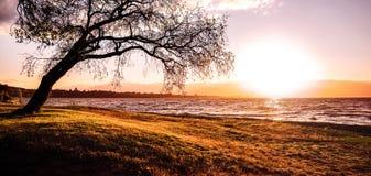 Λίμνη κρατήρων - εθνικό πάρκο Tongariro, Νέα Ζηλανδία Στοκ φωτογραφία με δικαίωμα ελεύθερης χρήσης