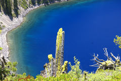 Λίμνη κρατήρων, Όρεγκον, ΗΠΑ Στοκ φωτογραφίες με δικαίωμα ελεύθερης χρήσης
