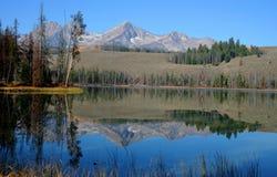 λίμνη λίγος σολομός στοκ φωτογραφία με δικαίωμα ελεύθερης χρήσης