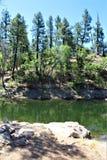 Λίμνη λυγξ, περιοχή δασοφυλάκων Bradshaw, εθνικό δρυμός Prescott, κράτος της Αριζόνα, Ηνωμένες Πολιτείες Στοκ Φωτογραφία