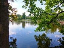 Λίμνη μέσω των δέντρων Στοκ εικόνες με δικαίωμα ελεύθερης χρήσης