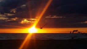 λίμνη Μίτσιγκαν στοκ φωτογραφία με δικαίωμα ελεύθερης χρήσης