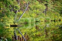 Λίμνη με μια αντανάκλαση Στοκ φωτογραφίες με δικαίωμα ελεύθερης χρήσης