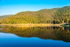 Λίμνη με τα ξηρά δέντρα στο βουνό το καλοκαίρι Στοκ φωτογραφίες με δικαίωμα ελεύθερης χρήσης