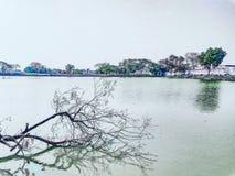 Λίμνη με τα πράσινα δέντρα στοκ φωτογραφία
