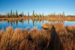 Λίμνη με την ξηρά κίτρινη σκιά χλόης και του φωτογράφου Στοκ Εικόνα