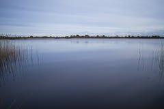 Λίμνη με το ομαλές νερό και τις αντανακλάσεις καλάμων Στοκ Εικόνες