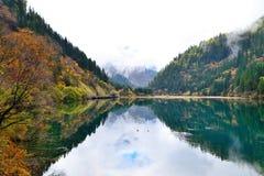Λίμνη μπαμπού βελών, Jiuzhaigou, Κίνα στοκ φωτογραφία με δικαίωμα ελεύθερης χρήσης