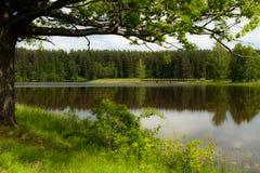Λίμνη μύλων στοκ εικόνα