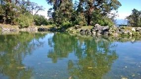 Λίμνη νερού Στοκ φωτογραφίες με δικαίωμα ελεύθερης χρήσης