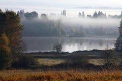λίμνη ομίχλης ελαφιών στοκ εικόνες