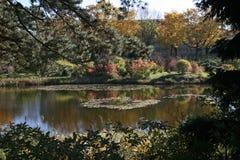 Λίμνη πάρκων στα χρώματα πτώσης στοκ εικόνες