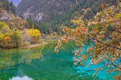 Λίμνη πέντε λουλουδιών, Jiuzhaigou στοκ φωτογραφία