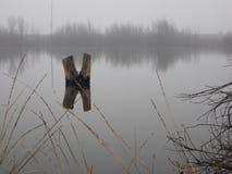 Λίμνη παπιών μια ομιχλώδη ημέρα Στοκ φωτογραφία με δικαίωμα ελεύθερης χρήσης