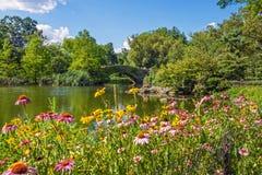Λίμνη παπιών του Central Park στοκ εικόνες