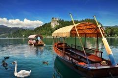 Λίμνη που αιμορραγείται Ευρώπη, Σλοβενία, Στοκ φωτογραφία με δικαίωμα ελεύθερης χρήσης