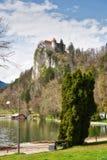 Λίμνη που αιμορραγείται, Σλοβενία στοκ εικόνες με δικαίωμα ελεύθερης χρήσης