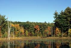Λίμνη πτώσης στοκ φωτογραφία με δικαίωμα ελεύθερης χρήσης