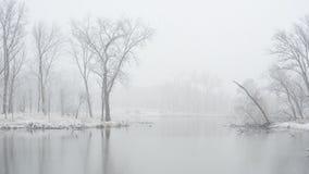 Λίμνη σε ένα πάρκο του Σικάγου στοκ φωτογραφίες
