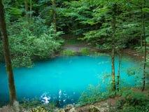 Λίμνη στα ξύλα, Ochiul Beiului, νομός Caras Severin, Ρουμανία στοκ φωτογραφίες