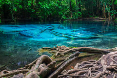 Λίμνη στην επαρχία Krabi στην Ταϊλάνδη Στοκ φωτογραφίες με δικαίωμα ελεύθερης χρήσης