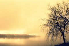 Λίμνη στην ελαφριά ομίχλη πρωινού σε Søøndersø Στοκ Εικόνες