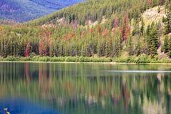 Λίμνη στην ιάσπιδα Στοκ φωτογραφία με δικαίωμα ελεύθερης χρήσης