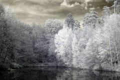 Λίμνη στις υπέρυθρες ακτίνες Στοκ Φωτογραφία