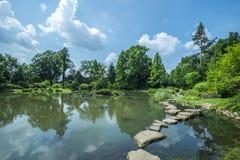 Λίμνη στον ιαπωνικό κήπο σε Wroclaw Στοκ Εικόνα