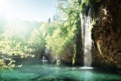 Λίμνη στο δάσος, Κροατία Στοκ φωτογραφίες με δικαίωμα ελεύθερης χρήσης