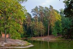 Λίμνη στο δάσος φθινοπώρου Στοκ Εικόνες