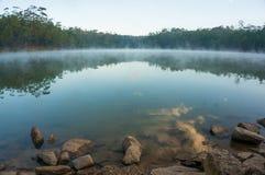 Λίμνη στο δάσος Στοκ Εικόνες