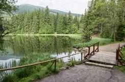 Λίμνη στο δασικό pleso του Tarn Vrbicke, Σλοβακία Στοκ εικόνες με δικαίωμα ελεύθερης χρήσης