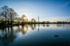 Λίμνη στο ηλιοβασίλεμα, στο πάρκο του Stanbury, στο Ντάνταλκ, Μέρυλαντ Στοκ φωτογραφία με δικαίωμα ελεύθερης χρήσης