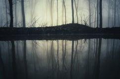 Λίμνη στο μυστήριο σκοτεινό δάσος με την ομίχλη Στοκ Εικόνες
