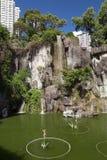 Λίμνη στο ναό αμαρτίας Wong Tai στο Χονγκ Κονγκ Στοκ Εικόνες
