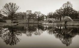 Λίμνη στο πάρκο, πανεπιστήμιο του Ώρχους, Δανία Στοκ Εικόνες